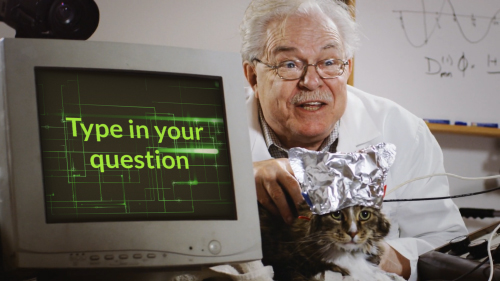 Funny Cat and Scientist